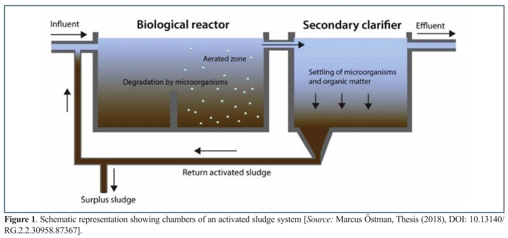 Vacuum Powered Treatment of Biological Wastewater for Applications in Environmental Biotechnology